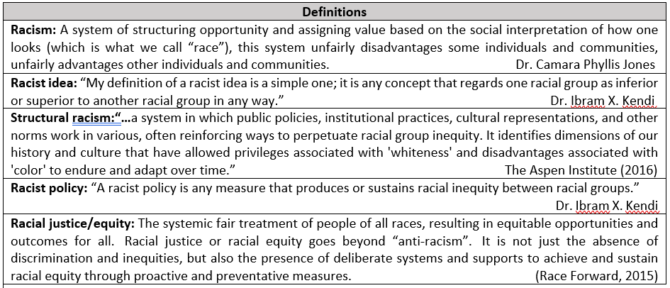 Table from the plan with definitions of racism, racist idea, structural racism, racist policy and racial justice/equity